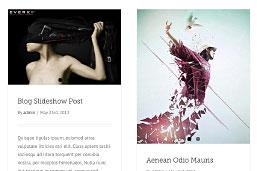 Avada Blog